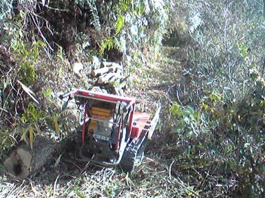 シイタケの原木を山から下ろしたよ!