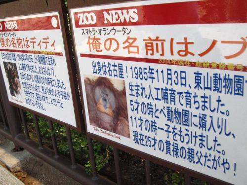 砥部動物園 猿の紹介