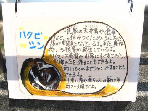 竜一の愛媛放浪記2 【とべ動物園~後編~】