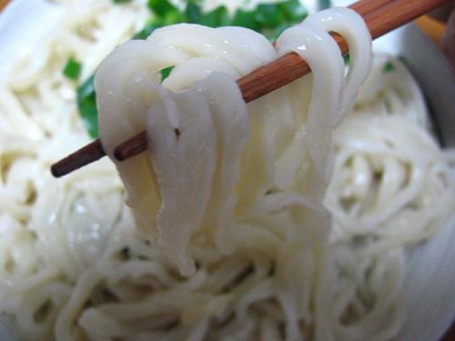 幻の本手打ちうどん山雀 麺アップ