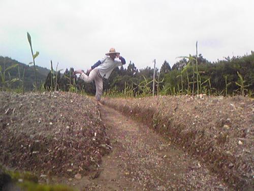 生姜畑でキラッ☆