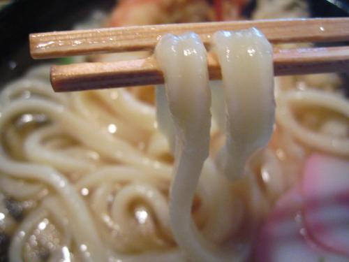 手打生そば・うどん信州庵 麺アップ2