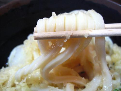 吉野川SA ぶっかけうどん 麺アップ