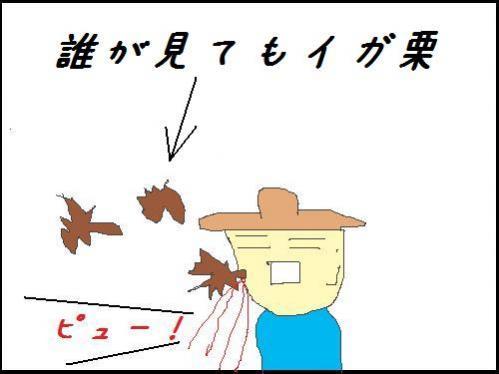 栗の直撃を食らう竜一さん