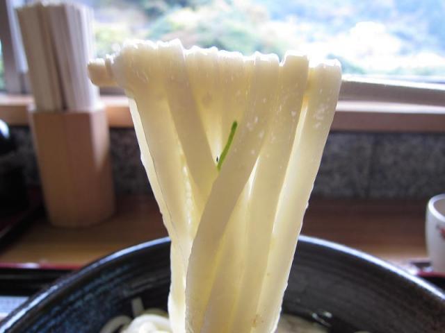 釜揚げうどん遊 麺アップ 天空版