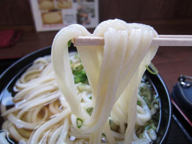 たも屋南国店 かけ(ひやあつ・特大) 麺アップ