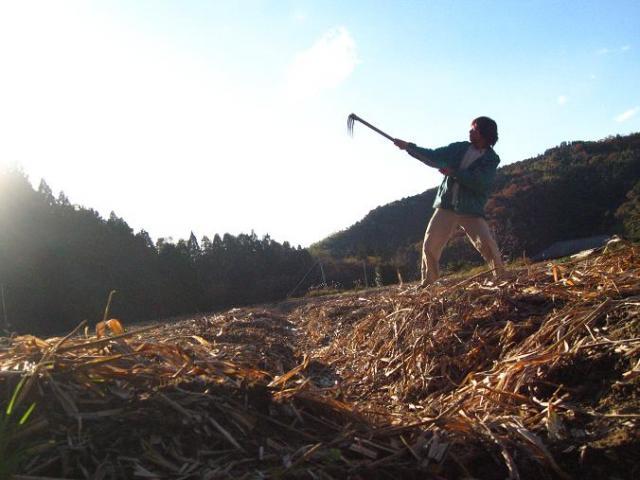 生姜畑と竜一さん
