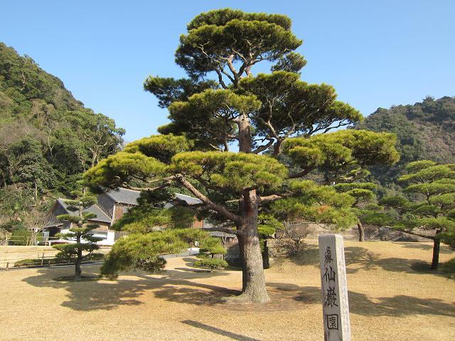 名勝「仙巌園」桜島がすぐそばに見える、島津家ゆかりの庭