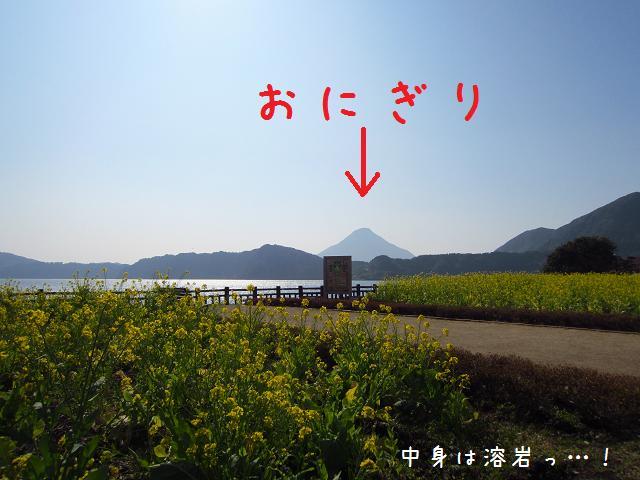 3日目!菜の花と池田湖と開聞岳