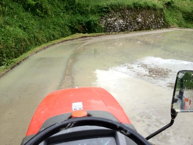 田んぼでジャバジャバ(トラクター・オンボードカメラからの画像)