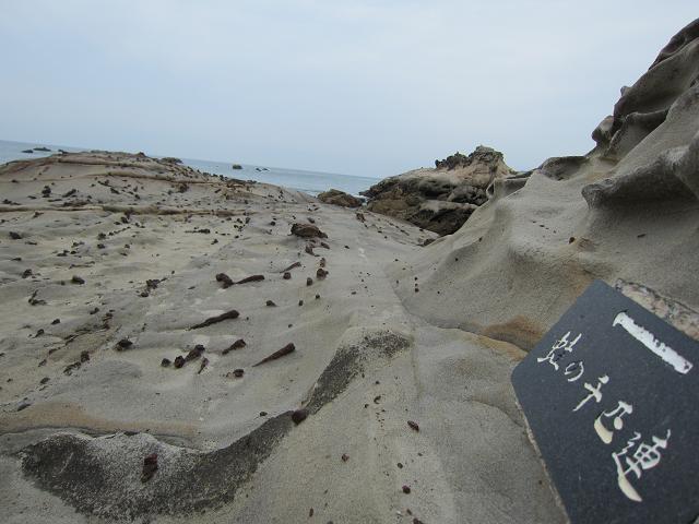 竜串海岸 蛇の千匹連