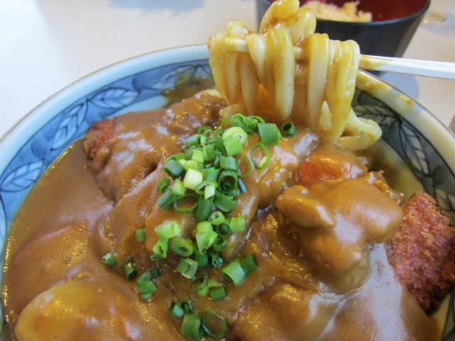鹿水庵 かつカレーうどん(大盛) 麺アップ