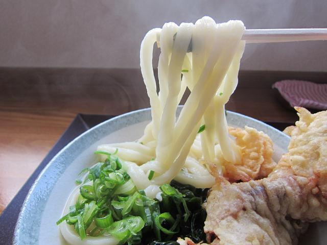 さぬきや かけ ゲソ天レボリューション 麺アップ