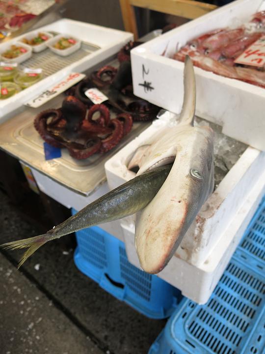 大正町市場で新鮮な魚を喰らう!・・・サメが