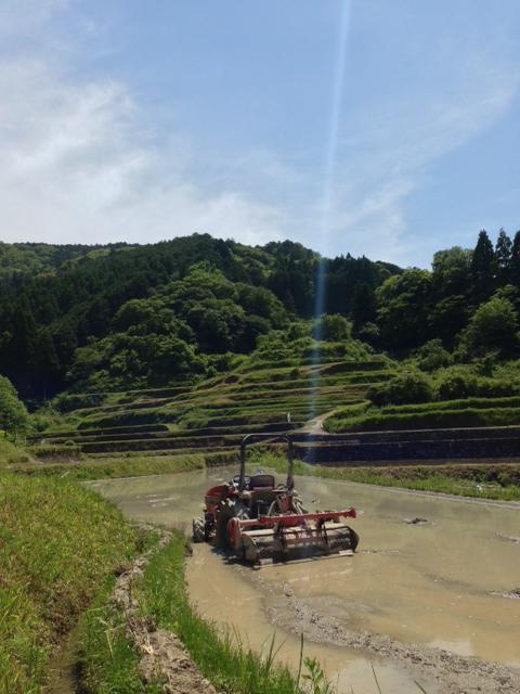 山間に広がる田園風景