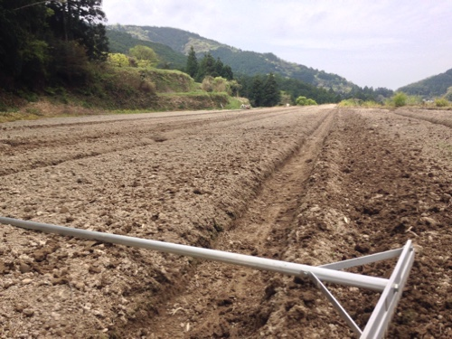 正しい畑の土のならし方