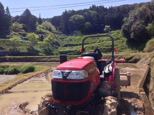 水張りを終えた田んぼ、トラクターの洗車、苗床、また生姜畑の作成へ