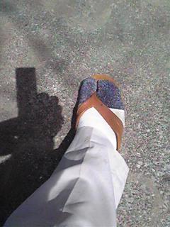 流行の靴下