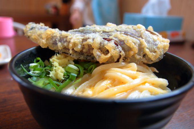 たも屋!釜玉うどんの美味しい食べ方。つゆ、醤油、かけ出汁の順よ!