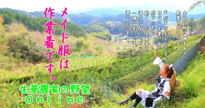 生姜農家の野望Onlineメイドトップ画像