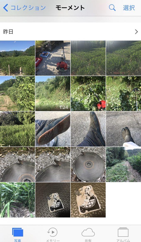 【農場カメラマン】田舎の風景は、緑と茶色のコーディネイト。