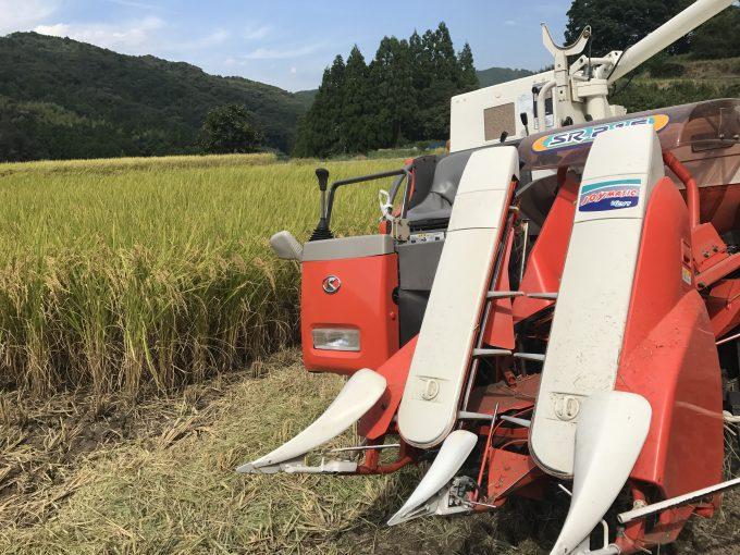 稲刈り2017、終了。~小雨落ちる田んぼの中で、ビーウィズユー~