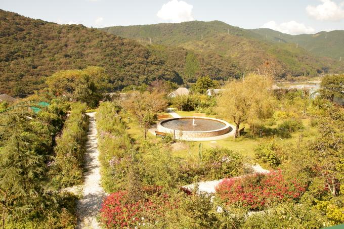 モネの庭の景色