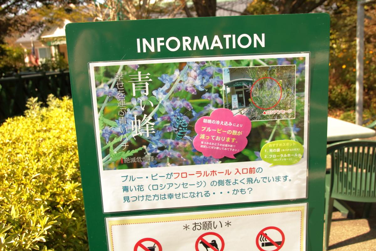 モネの庭「青い蜂」の看板
