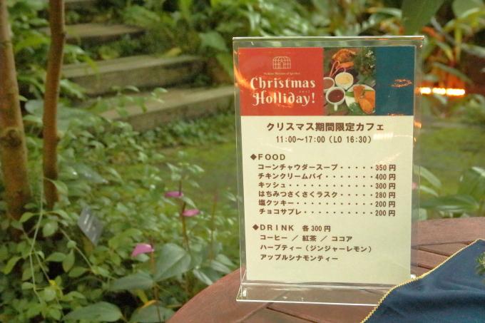 牧野植物園 クリスマスイベント中の風景