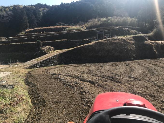 トラクターで生姜畑を耕す