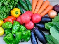 盛りだくさんの野菜