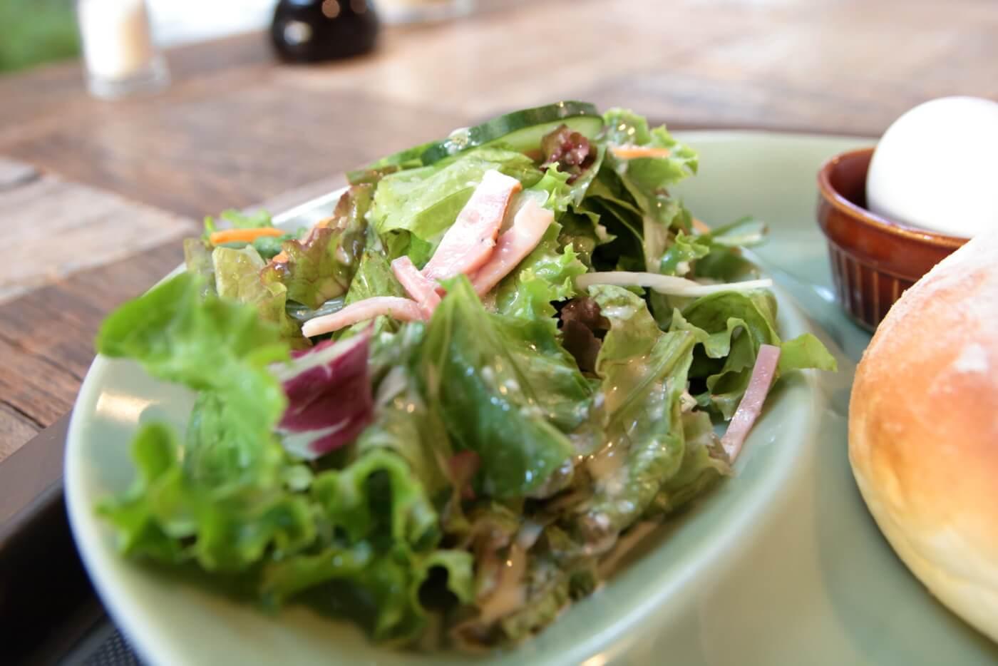 高知南国市の農園レストラン TRITON(トリトン)モーニングのサラダ
